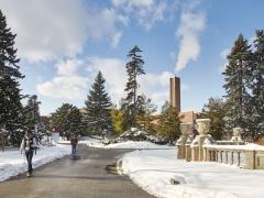 Snow outside Glendon Hall